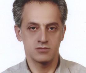 Mohamad Sedaghat