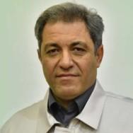 Mohammadreza Honarikia